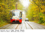 Купить «Tram moves on railway on road in yellow autumn park in city at overcast day», фото № 28210793, снято 8 октября 2016 г. (c) Losevsky Pavel / Фотобанк Лори