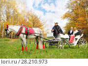Купить «Happy couple are in coach with horse and coachman in yellow autumn park», фото № 28210973, снято 10 октября 2016 г. (c) Losevsky Pavel / Фотобанк Лори