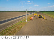 Купить «KRASNODAR REGION, RUSSIA - AUG 19, 2015: Machine loads of sugar beet into truck, In 2015 in Krasnodar region have collected record grain harvest - 102 million tons of grain», фото № 28211417, снято 19 августа 2015 г. (c) Losevsky Pavel / Фотобанк Лори