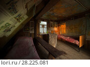 Купить «Foresters cabin in the Chernobyl Exlusion Zone, Ukraine September», фото № 28225081, снято 22 июля 2018 г. (c) Nature Picture Library / Фотобанк Лори