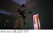 Купить «Woman pole dancer in black tight-fitting clothes is dancing in a stidio», видеоролик № 28227177, снято 22 июля 2019 г. (c) Константин Шишкин / Фотобанк Лори