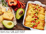 Купить «baked enchiladas of rolled corn tortillas», фото № 28227537, снято 16 марта 2018 г. (c) Oksana Zh / Фотобанк Лори
