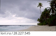 Deserted tropical beach with palm trees and small rocks in the island Fuvahmulah, Indian Ocean, Maldives. Стоковое видео, видеограф Некрасов Андрей / Фотобанк Лори