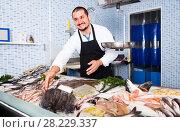 Купить «Seller showing fish lying», фото № 28229337, снято 27 октября 2016 г. (c) Яков Филимонов / Фотобанк Лори