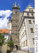Купить «Klatovy, Czech Republic - Southside view of Jesuit Church of Immaculate Conception of the Virgin Mary and St. Ignatius, Black Tower and Old Town Hall.», фото № 28233013, снято 20 мая 2016 г. (c) age Fotostock / Фотобанк Лори