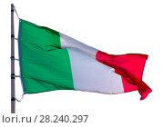 flag of Italy on flagpole, white background. Isolated. Стоковое фото, фотограф Яков Филимонов / Фотобанк Лори