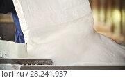 Купить «Worker dropping crystal sugar on the production line at the sugar factory», видеоролик № 28241937, снято 21 июля 2018 г. (c) Константин Шишкин / Фотобанк Лори