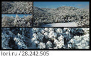 Купить «Video collage of winter landscapes with pine forest in the snow at sunny frozen day», видеоролик № 28242505, снято 29 марта 2018 г. (c) Яков Филимонов / Фотобанк Лори