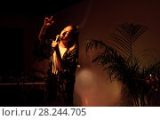 Купить «Певица Alina Os в ночном клубе», эксклюзивное фото № 28244705, снято 29 марта 2018 г. (c) Дмитрий Неумоин / Фотобанк Лори