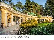 Купить «Сочинский дендрарий. Entrance to the arboretum», фото № 28255045, снято 20 января 2018 г. (c) Baturina Yuliya / Фотобанк Лори