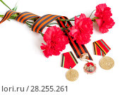 Купить «9 May Victory Day festive background - jubilee medals of Great patriotic war with red carnations and St George ribbon», фото № 28255261, снято 7 апреля 2017 г. (c) Зезелина Марина / Фотобанк Лори