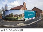Купить «Landex Goldmsiths housing development, Crown Nursery, Ufford, Suffolk, England, UK.», фото № 28256881, снято 25 января 2018 г. (c) age Fotostock / Фотобанк Лори