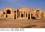 Купить «Ancient Assyria: the temple at Hatra (al-Hadr) northern Iraq, 2nd Century BC. Iraq. In 2014 Hatra was taken over by Islamic State militants and much of the site was destroyed in 2015.», фото № 28258473, снято 22 апреля 2018 г. (c) Nature Picture Library / Фотобанк Лори
