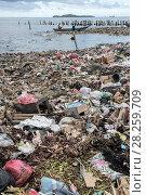 Купить «Marine pollution on beach near Sorong Fish Market, Bos Wesen Market, Sorong, West Papua, Indonesia», фото № 28259709, снято 2 июня 2020 г. (c) Nature Picture Library / Фотобанк Лори