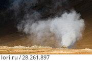 Купить «Steam vent at Hverir. Námafjall, Iceland. June 2008», фото № 28261897, снято 19 апреля 2018 г. (c) Nature Picture Library / Фотобанк Лори