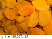 Купить «Background - golden delicate confectionery dried apricots closeup», фото № 28267485, снято 5 апреля 2018 г. (c) Евгений Харитонов / Фотобанк Лори