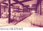 Купить «wooden barrels in winery factory», фото № 28273621, снято 28 июня 2014 г. (c) Яков Филимонов / Фотобанк Лори