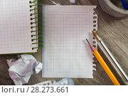 Купить «Torn crumpled notebook sheet», фото № 28273661, снято 22 апреля 2018 г. (c) Яков Филимонов / Фотобанк Лори