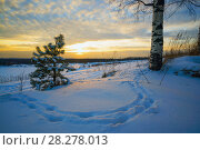 Купить «Winter landscape, sunset footprints in the snow», фото № 28278013, снято 21 марта 2018 г. (c) Алексей Маринченко / Фотобанк Лори