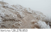 Купить «Movement on a grassy mountain slope», видеоролик № 28278853, снято 26 марта 2018 г. (c) Андрей Радченко / Фотобанк Лори