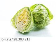 Купить «cabbage young green», фото № 28303213, снято 13 марта 2018 г. (c) Peredniankina / Фотобанк Лори