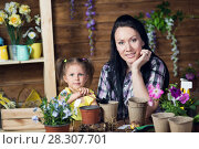 Купить «Mom and child are planting flowers», фото № 28307701, снято 14 апреля 2018 г. (c) Типляшина Евгения / Фотобанк Лори