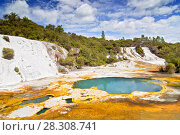 Купить «Colourful silica terrace formed by hot water algae growing in the geothermal area of Orakei Korako (The Hidden Valley), Northern Island, New Zealand», фото № 28308741, снято 26 мая 2019 г. (c) BE&W Photo / Фотобанк Лори