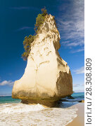 Купить «White limestone rock formations and fine sandy beach at Cathedral Cove on the Coromandel Peninsula in New Zealand, North Island», фото № 28308809, снято 18 июня 2019 г. (c) BE&W Photo / Фотобанк Лори