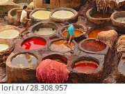 Купить «Man working as a tanner in the dye pots at leather tanneries viewed from from the Terrace de Tanneurs in the ancient Fez medina, Morocco», фото № 28308957, снято 24 октября 2018 г. (c) BE&W Photo / Фотобанк Лори