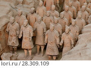 """Купить «The Terracotta Army or the """"Terra Cotta Warriors and Horses"""" buried in the pits next to the Qin Shi Huang's tomb, Xi'an China», фото № 28309109, снято 27 марта 2019 г. (c) BE&W Photo / Фотобанк Лори"""