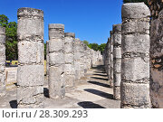 Купить «The columns in the Thousand Warriors Temple complex inside the maya archeological site of Chichen Itza, Mexico», фото № 28309293, снято 16 октября 2018 г. (c) BE&W Photo / Фотобанк Лори