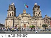 Купить «Metropolitan Cathedral of the Assumption of Mary, the largest church in Latin America, Zocalo, Plaza de la Constitucion, Mexico City, Mexico», фото № 28309297, снято 18 января 2020 г. (c) BE&W Photo / Фотобанк Лори