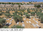 Купить «The Golden Gate and christian cemetery in the Kidron valley on the foot of the mount of olives in Jerusalem, Israel», фото № 28309457, снято 19 октября 2018 г. (c) BE&W Photo / Фотобанк Лори