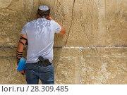Купить «Man with gun praying inside the synagogue at the Western Wall (Wailing Wall) in Jewish Quarter, Old City, Jerusalem, Israel», фото № 28309485, снято 24 апреля 2018 г. (c) BE&W Photo / Фотобанк Лори
