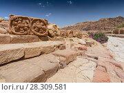 Купить «Roman avenue in Nabatean Petra Jordan Middle East», фото № 28309581, снято 22 августа 2018 г. (c) BE&W Photo / Фотобанк Лори