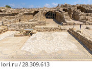 Купить «The ancient floor mosaic in archaeological site decorated with images of wild animals, surrounded by grape vines in Caesaria, Israel», фото № 28309613, снято 20 апреля 2019 г. (c) BE&W Photo / Фотобанк Лори