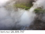 Купить «Hot springs at Deildartunguhver, Iceland, September 2009. Photographed for the Freshwater Project.», фото № 28309797, снято 16 июля 2018 г. (c) Nature Picture Library / Фотобанк Лори