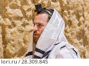 Купить «Ultra Orthodox Jew wrapped with traditional religious Talit shawl and Tefillin phylacteries at prayer in the Western Wall old city, East Jerusalem, Israel», фото № 28309845, снято 23 января 2019 г. (c) BE&W Photo / Фотобанк Лори