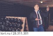 Купить «Sommelier tasting red wines in winery basement», фото № 28311301, снято 22 января 2018 г. (c) Яков Филимонов / Фотобанк Лори