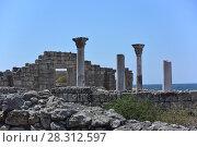 Херсонес Таврический руины древнегреческого города (2016 год). Стоковое фото, фотограф Скалдина Мария / Фотобанк Лори