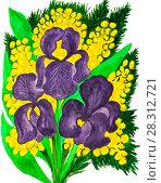 Купить «Violet irises and mimosa», иллюстрация № 28312721 (c) ИВА Афонская / Фотобанк Лори