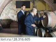 Купить «two wine makers in winery cellar», фото № 28316605, снято 23 апреля 2018 г. (c) Яков Филимонов / Фотобанк Лори