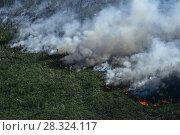Купить «Лес горит, вид сверху», фото № 28324117, снято 12 июля 2007 г. (c) Владимир Мельников / Фотобанк Лори