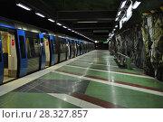 Купить «Стокгольмский метрополитен», фото № 28327857, снято 3 февраля 2012 г. (c) Яковлев Сергей / Фотобанк Лори