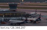 Купить «Airplanes at Terminal D in Sheremetyevo Airport, Moscow», видеоролик № 28344297, снято 7 августа 2017 г. (c) Данил Руденко / Фотобанк Лори