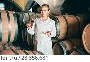 Купить «Woman checking ageing process of wine», фото № 28356681, снято 21 сентября 2016 г. (c) Яков Филимонов / Фотобанк Лори