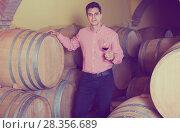 Купить «attractive man posing in winery cellar», фото № 28356689, снято 21 сентября 2016 г. (c) Яков Филимонов / Фотобанк Лори