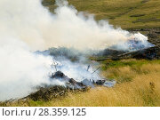 Купить «Burning brush wood from a forestry plantation near Egremont, Cumbria, England, UK, August.», фото № 28359125, снято 15 августа 2018 г. (c) Nature Picture Library / Фотобанк Лори