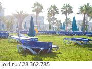 Купить «Palm beach with empty sunbeds against Constantinou Bros Athena Beach Hotel. The hotel was fully refurbished in the winter of 10/11», фото № 28362785, снято 20 июля 2017 г. (c) Papoyan Irina / Фотобанк Лори
