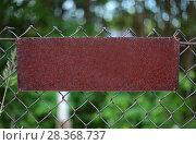 Rusty Plate on a metal grating. Стоковое фото, фотограф Николай Лемешев / Фотобанк Лори